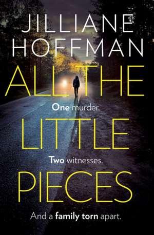 All the Little Pieces de Jilliane Hoffman
