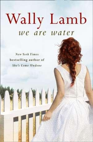 We Are Water de Wally Lamb