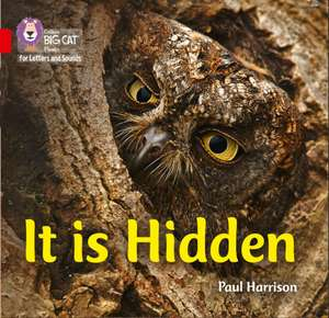 It is Hidden