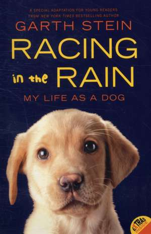 Racing in the Rain: My Life as a Dog de Garth Stein