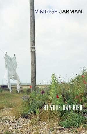 At Your Own Risk de Derek Jarman