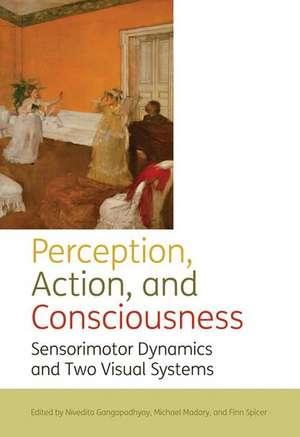 Perception, action, and consciousness: Sensorimotor Dynamics and Two Visual Systems de Nivedita Gangopadhyay