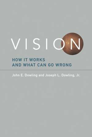 Vision – How It Works and What Can Go Wrong
