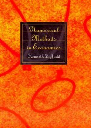 Numerical Methods in Economics de Kenneth Judd