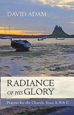 The Radiance of His Glory de David Adam