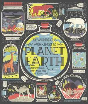 The Wondrous Workings of Planet Earth de Rachel Ignotofsky