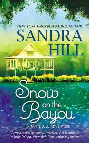 Snow on the Bayou: A Tante Lulu Adventure de Sandra Hill