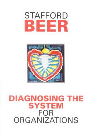 Diagnosing the System for Organizations imagine