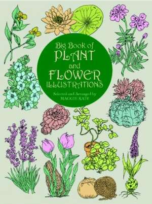 Big Book of Plant and Flower Illustrations de Maggie Kate