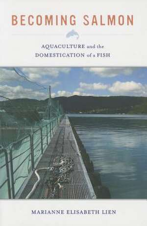 Becoming Salmon – Aquaculture and the Domestication of a Fish de Marianne Elisab Lien