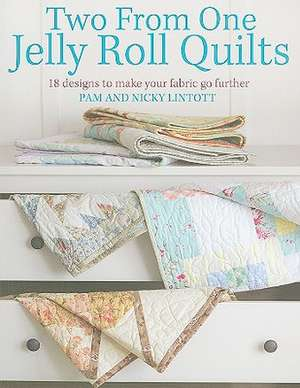 Two from One Jelly Roll Quilts imagine