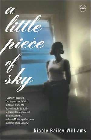 A Little Piece of Sky de Nicole Bailey-Williams