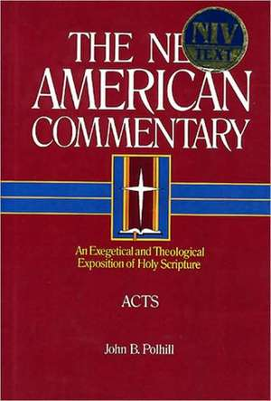 Acts:  An Exegetical and Theological Exposition of Holy Scripture de John B. Polhill