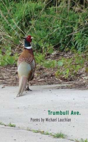 Trumbull Ave. de Michael Lauchlan