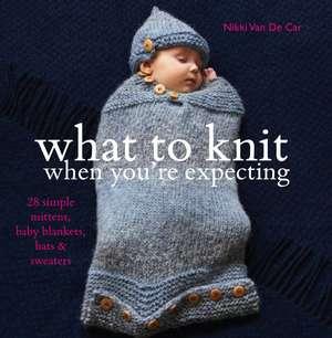 What to Knit When You're Expecting de Nikki Van De Car