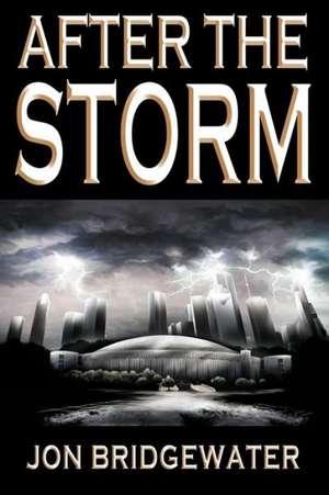 After the Storm:  A David Storm Mystery de MR Jon D. Bridgewater