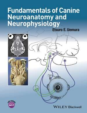 Fundamentals of Canine Neuroanatomy and Neurophysiology imagine