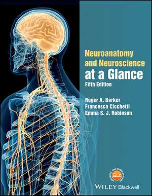 Neuroanatomy and Neuroscience at a Glance