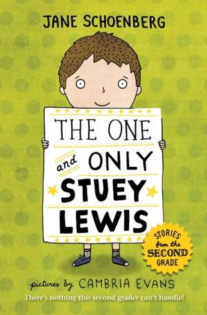 The One and Only Stuey Lewis:  Stories from the Second Grade de Jane Schoenberg
