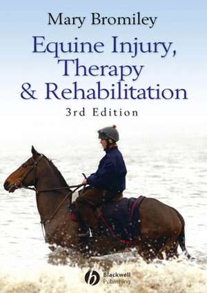 Equine Injury, Therapy and Rehabilitation