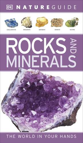 Nature Guide Rocks and Minerals: The World in Your Hands de DK