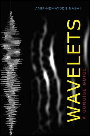 Wavelets – A Concise Guide de Amir–homayoon Najmi