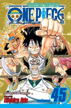 One Piece, Vol. 45 de Eiichiro Oda