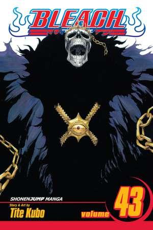 Bleach, Volume 43 de Tite Kubo