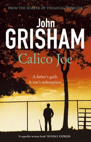 Calico Joe de John Grisham