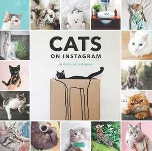 Cats on Instagram de @cats_of_instagram