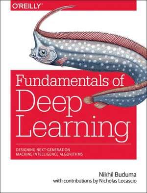 Fundamentals of Deep Learning imagine