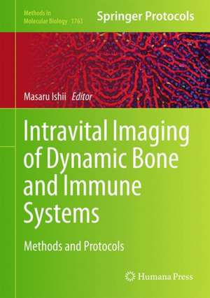 Intravital Imaging of Dynamic Bone and Immune Systems