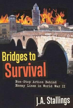 Bridges to Survival imagine