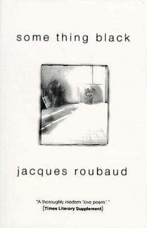 Some Thing Black de Jacques Roubaud