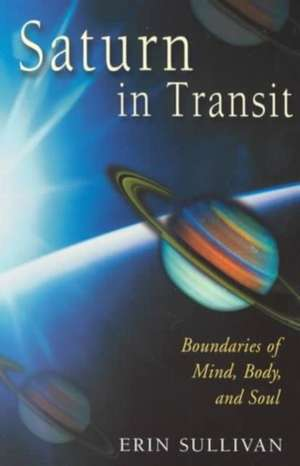 Saturn in Transit de Erin Sullivan
