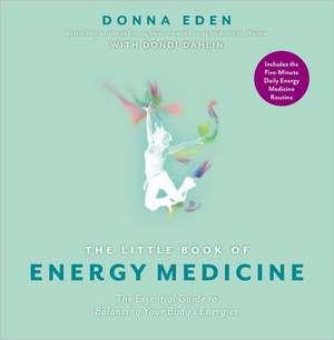 The Little Book of Energy Medicine de Donna Eden