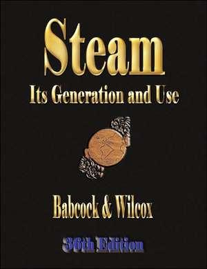 Steam de Babcock & Wilcox Co