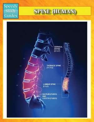Spine (Human) (Speedy Study Guides)
