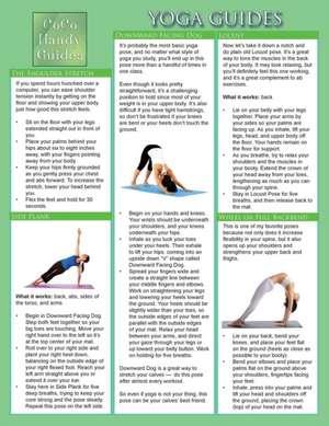 Yoga Guides:  Yoga Tips and Techniques de Jyoti Baluran