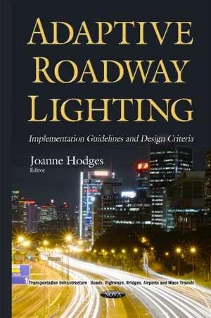 Adaptive Roadway Lighting Implementation imagine