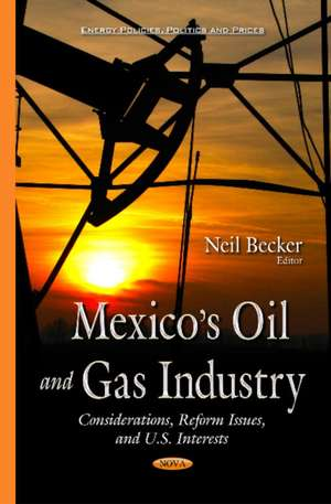 Mexicos Oil & Gas Industry imagine