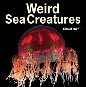 Weird Sea Creatures imagine