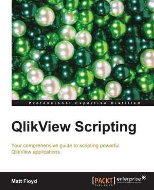 Qlikview Scripting de Matt Floyd