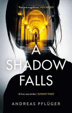 A Shadow Falls de Andreas Pfluger
