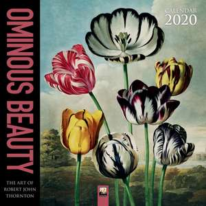 Ominous Beauty - The Art of Robert John Thornton Wall Calendar 2020 (Art Calendar) de Flame Tree Studio