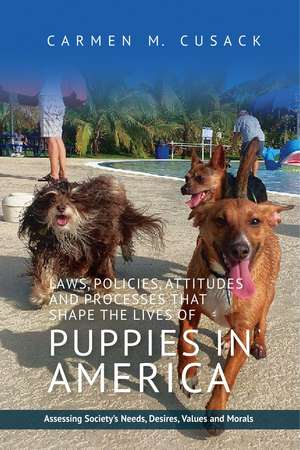 Laws, Policies, Attitudes & Processes That Shape the Lives of Puppies in America imagine
