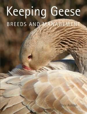 Keeping Geese imagine