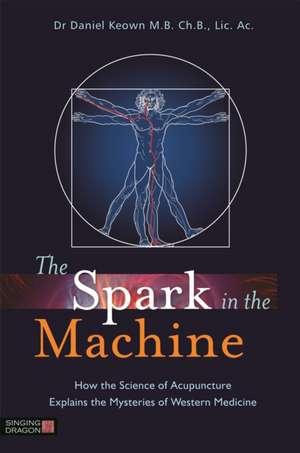 The Spark in the Machine imagine