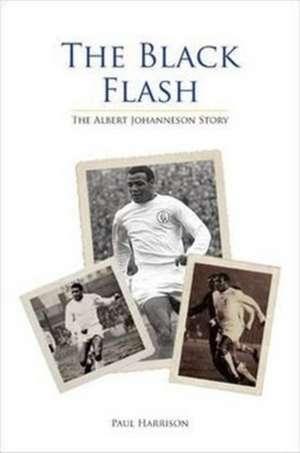 The Black Flash de Paul Harrison