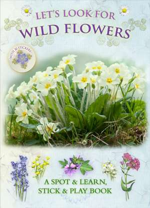 Let's Look for Wild Flowers imagine